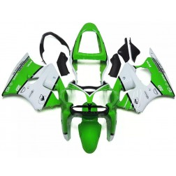 Green & White Motorcycle Fairings For 2000-2002 Kawasaki ZX-6R