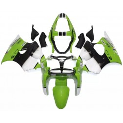 Green, White & Black Motorcycle Fairings For 2000-2002 Kawasaki ZX-6R
