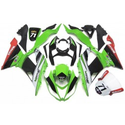 Green, Black & White Motorcycle Fairings For 2013-2017 Kawasaki ZX-6R